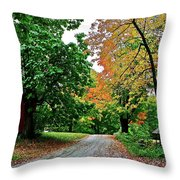 Old Red House Throw Pillow