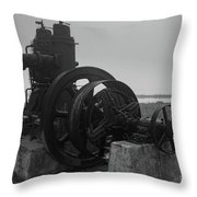 Old Rice Field Pump Bw Throw Pillow