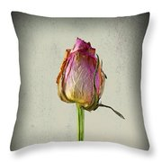 Old Rose On Paper Throw Pillow