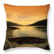 Old Rowboat At Waters Edge With Sunset Throw Pillow by Don Hammond