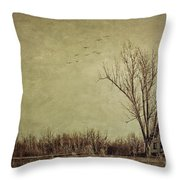 Old Rural Farmhouse With Grunge Feeling Throw Pillow
