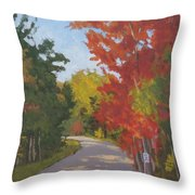 Old Scoolhouse Road Fall - Art By Bill Tomsa Throw Pillow