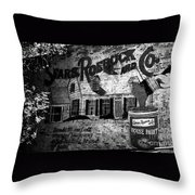 Old Sears Paint Sign Throw Pillow