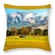 Old Shed Throw Pillow