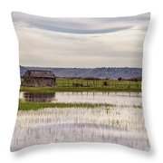 Old Shed On Marsh Throw Pillow