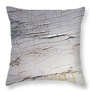 Old Siding Throw Pillow
