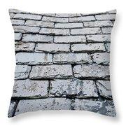 Old Slate Tiles Throw Pillow