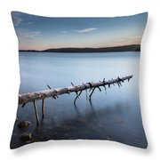 Old Spruce Throw Pillow
