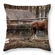 Old Stayer Throw Pillow