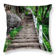 Old Steps Throw Pillow