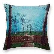 Old Steps To The Horizon Throw Pillow