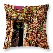 Old Stone House In Provence Throw Pillow