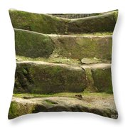 Old Stone Steps Throw Pillow