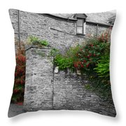 Old Stones Called Home Throw Pillow