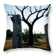 Old Stones In Old Cementery Throw Pillow