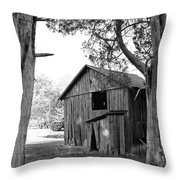 Old Structures Throw Pillow