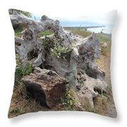 Old Stump At Gold Beach Oregon 5 Throw Pillow
