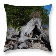 Old Stump Throw Pillow