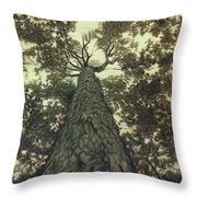 Old Sugar Maple Tree Throw Pillow