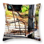 Old Swing Throw Pillow