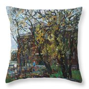 Old Swings Throw Pillow