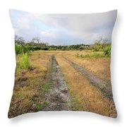 Old Texas Roads Throw Pillow