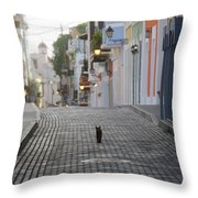 Old Town Alley Cat Throw Pillow