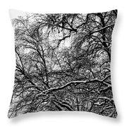 Old Tree 6 Throw Pillow