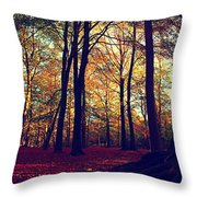 Old Tree Silhouette In Fall Woods Throw Pillow