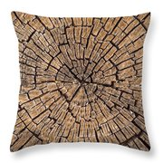 Old Tree Stump Throw Pillow