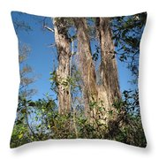 Old Tress  Throw Pillow