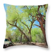 Old Truck At Abiquiu Throw Pillow