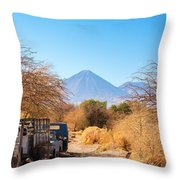 Old Truck In San Pedro De Atacama Throw Pillow