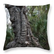 Old Trunk In The Swamp Throw Pillow