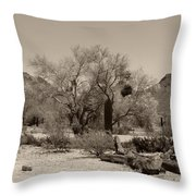 Old Tucson Landscape  Throw Pillow