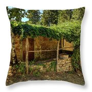 Old Tuscany Throw Pillow
