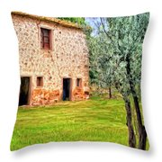 Old Villa And Olive Trees Throw Pillow