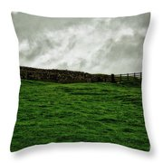 Old Wall, New Gate Throw Pillow