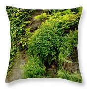 Old Walls Rising From The Water Edge. Throw Pillow