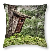 Old Weathered Worn Bird House In Summer Throw Pillow