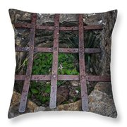 Old Well Throw Pillow
