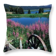 Old Wheel And Brooks Lake Throw Pillow by Kathy Yates