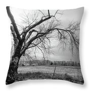 Old Winter Tree Grayscale Throw Pillow