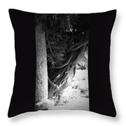 Old Wisteria 2 Throw Pillow