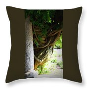 Old Wisteria Throw Pillow