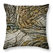 Old Wood 1 Throw Pillow
