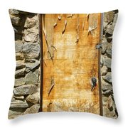 Old Wood Door And Stone - Vertical  Throw Pillow