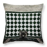 Old World Water Fountain Throw Pillow