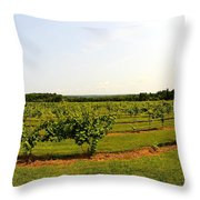 Old York Winery Throw Pillow