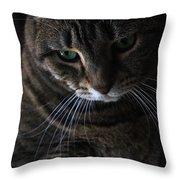 Ole Green Eyes Throw Pillow